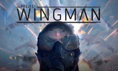 Project Wingman Game