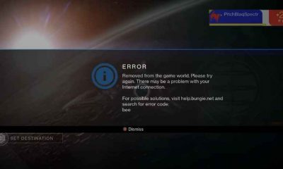 Destiny 2 error code bee screen